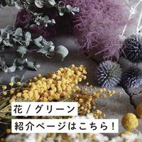 「花/グリーンカテゴリー」の作り手一覧はこちら!