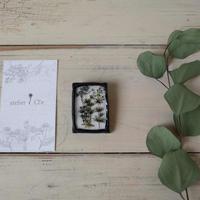 atelier Cl'e|botanical U