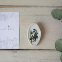 atelier Cl'e botanical D