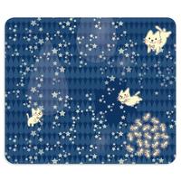 19-10TNEo*月光雨のねこの帯なし手帳型スマホケースC