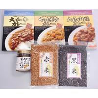 【古代米カレーセット】べっぴん奈良漬 和風らー油付き