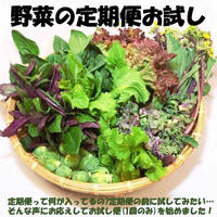 なら野菜の定期便 お試し版