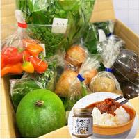 【地元の採れたて野菜セット】べっぴん奈良漬 和風らー油付き