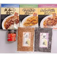 【古代米カレーセット】べっぴん奈良漬 激辛みそ付き