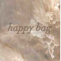 happy bag 2168 ピアスorチタンポストピアス