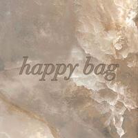 happy bag 2178 ピアス