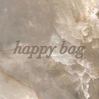 happy bag3812