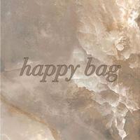 happy bag 2141