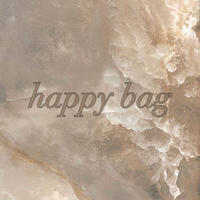 happy bag 2169 ピアス