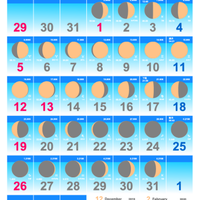 ムーンカレンダー2020 Colorタイプ 縦型