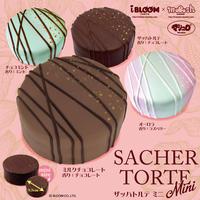 ザッハトルテ ミニ/Sacher Torte mini