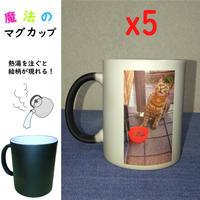 【9% OFF】同じ絵柄5コ注文でさらにお得!魔法のマグカップ 【熱湯を注ぐと絵柄が現れる!】