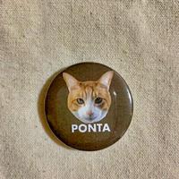 ●イケポン ピンバッジ Instagramで大人気のポン太ちゃんがグッズになりました!