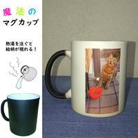 オリジナルグッズ-魔法のマグカップ
