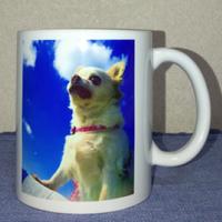 オリジナルグッズ-マグカップ