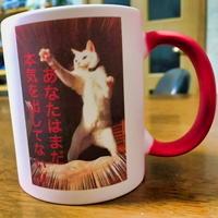 本気リリー 魔法のマグカップ 【熱湯を注ぐと絵柄が現れる!】