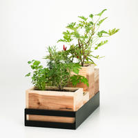 Planter L