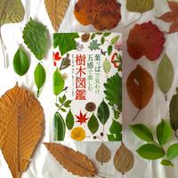 葉っぱで見わけ五感で楽しむ 樹木図鑑
