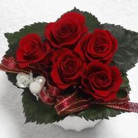 プリザーブドフラワー 大切な人に贈る赤いミニバラ