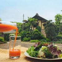 にんじんジュース【1ℓ× 20本】★毎朝にんじんジュースの新習慣★