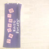 【Spring Live -MIRRORS-】フェイスタオル