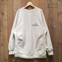 90's Champion Reverse Weave Sweatshirt AT&T