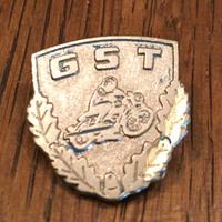 GST Pins