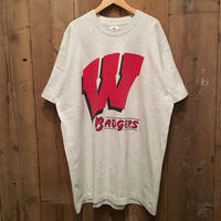 90's FRUIT FO THE LOOM Wisconsin Badgers Tee