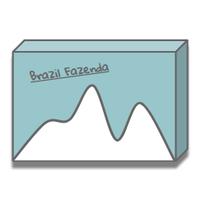ブラジル・ファゼンダ 中煎り - Brazil Fazenda -