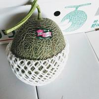 メロン「肥後グリーン」 1玉