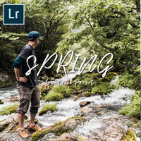 N5 SPRING'18 LIGHTROOM PRESETS