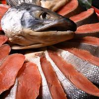 【20尾限定】特選新巻鮭 1尾(オホーツク産の天然鮭 希少な大ぶり約3.2kg)切身パック【AX-2】
