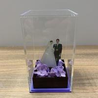 Hapbox (アジサイ)