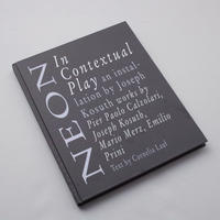 Joseph Kosuth / Neon In Contextual Play