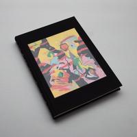 Harold Ancart / Soft Places (II)