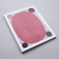 Sabine Finkenauer / La Funambule Sur Le Fil D'une Tendre Geometrie