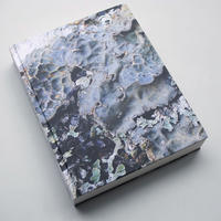 Oliver Moore / Bryophytes and Lichens of Letterewe