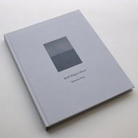 Masao Yamamoto / Small Things in Silence