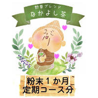 美肌デトックス 粉末 9g(30日分)  定期購入