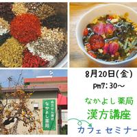【カフェセミナーチケット】第30回Dr.かもめの漢方講座 ~お疲れ回復☆夏の薬膳