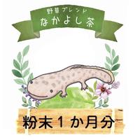 オオサンショウウオ粉末9g(30日分)