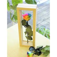 """【名入れ】【送料無料】プリザーブドフラワー レインボーローズ""""Rainbow Herbier""""Arrangement 茎までプリザーブドフラワー1輪挿し 原色"""