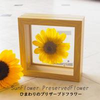 【名入れ】【送料無料】ひまわり プリザーブドフラワー sunflower フラワーギフト 向日葵 フラワーギフト 誕生石のモチーフクリスタルアクセサリー付き