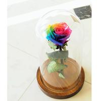 【名入れ】【送料無料】プリザーブドフラワー レインボーローズ ''Rainbow Dome'' Mサイズ ガラスドーム レインボーローズ茎までプリザーブドフラワー