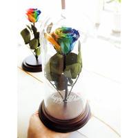 【名入れギフト】【送料無料】プリザーブドフラワー オーシャンローズ ''Ocean Dome'' ガラスドーム レインボーローズ茎までプリザーブドフラワー