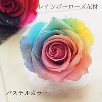 プリザーブドフラワー・花材 レインボーローズ パステル  Mサイズ ラメ入り  のコピー
