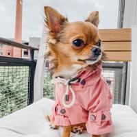 [max-bone] Raincoat  ピンク