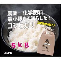 🉐定期便【新米】コシヒカリ 5kg 3ヶ月定期便(3回分)