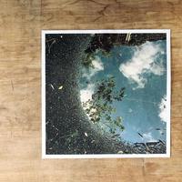 写真(水たまりの空)