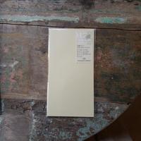 【TRAVELER'S notebook】リフィル 月間フリー